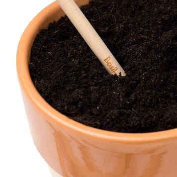 Tužka Sprout, kterou můžete zasadit